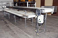 used TWO-LEVEL INSPECTION BELT / CORING CONVEYOR / TRIM TABLE / PACKING CONVEYOR, Alard item Y3767